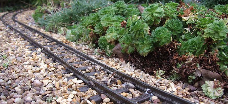 Garden Railway Track
